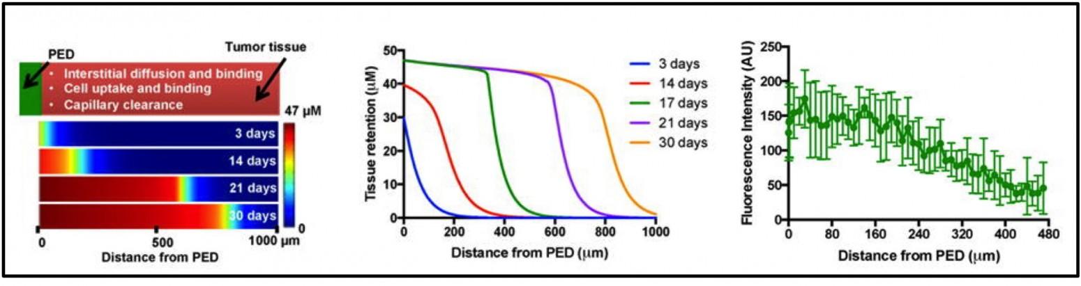 tunabledeliveryplatformgraphic